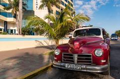 Reis Cuba 001.JPG