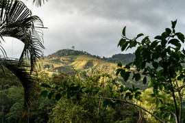 Costa Rica 2019  023.jpeg