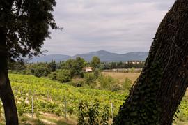 Provence 2013  035.jpeg