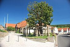 Gerichtslinde in Birnfeld