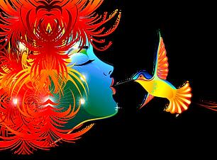 curso-illustrator-online.png