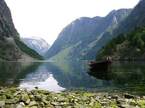 Viking Fjords