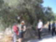 5.Akamas walk.jpg