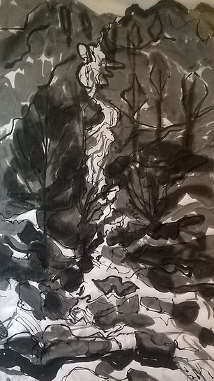 2.Sour Milk Gill, Lake District. Ink on