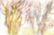 10. Made of Walking Akamas Cyprus sketch
