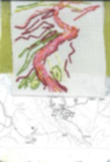 9. Made of Walking Akamas Cyprus sketchb