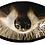 Thumbnail: Raccoon Face Mask