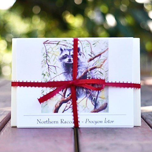 SBWCN Greeting Cards