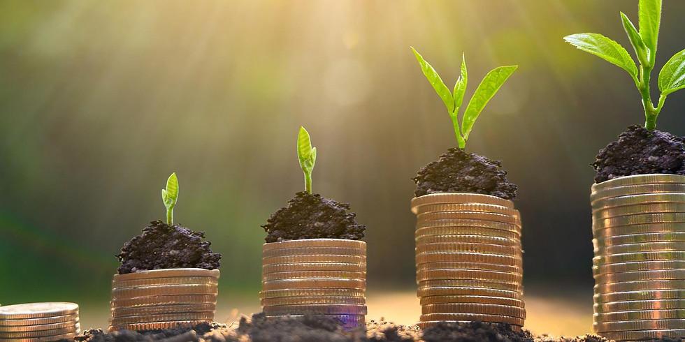 Innhenting av kapital for grønne selskaper