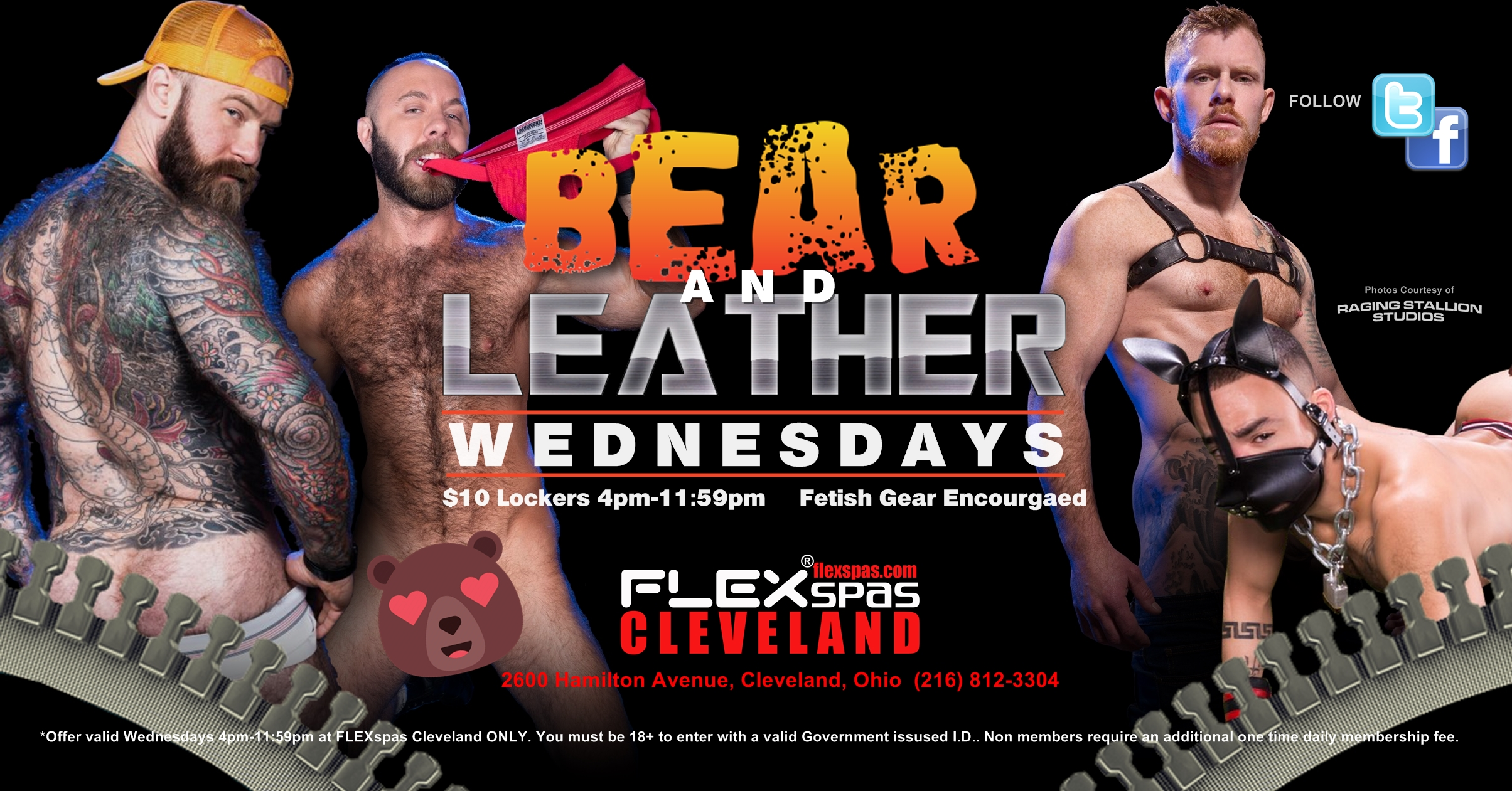 Bear & Leather