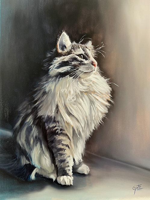Jhon Gutti Commissioned Pet Portraits