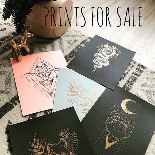 Prints from Jessy D.