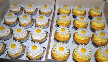 Large Daisy Cupcakes.JPG