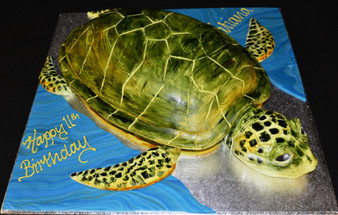 Turtle 4.JPG