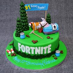 FORTNITE ROUND CAKE.JPG