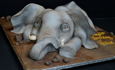 Elephant (3).JPG