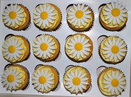 Large Daisy Lemon Cupcakes.JPG