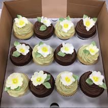 primrose cupcakes.JPG