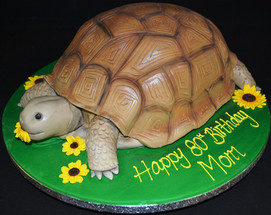 Tortoise eating Flowers.JPG