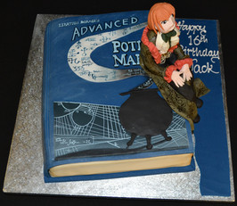 Advanced Potter book with figure.JPG