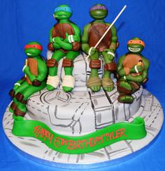 turtle duo.JPG