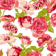 12 - Pink Roses