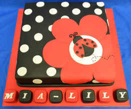 Ladybird and blocks with spots.JPG