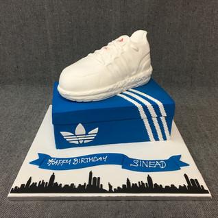 adidas shoe on box.JPG