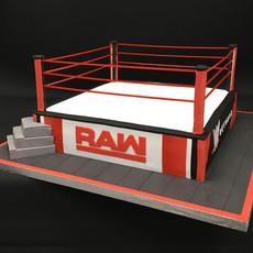 RAW ring (Copy).jpg