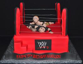 Wrestling Ring (2).JPG