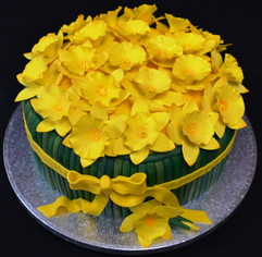 round daffodils.JPG