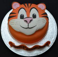 tiger face cute.JPG