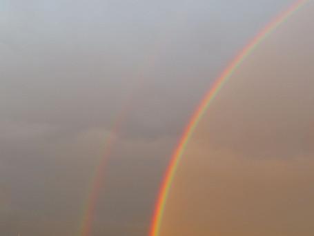 迫力のある虹でした。