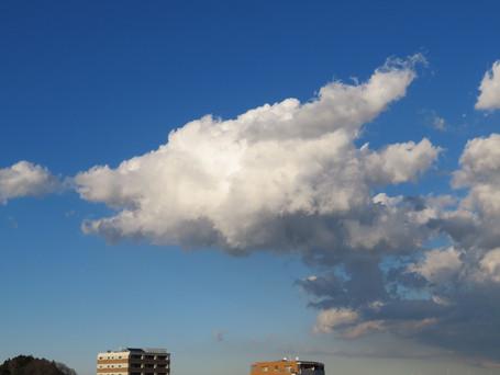 恐竜の様な雲でした。