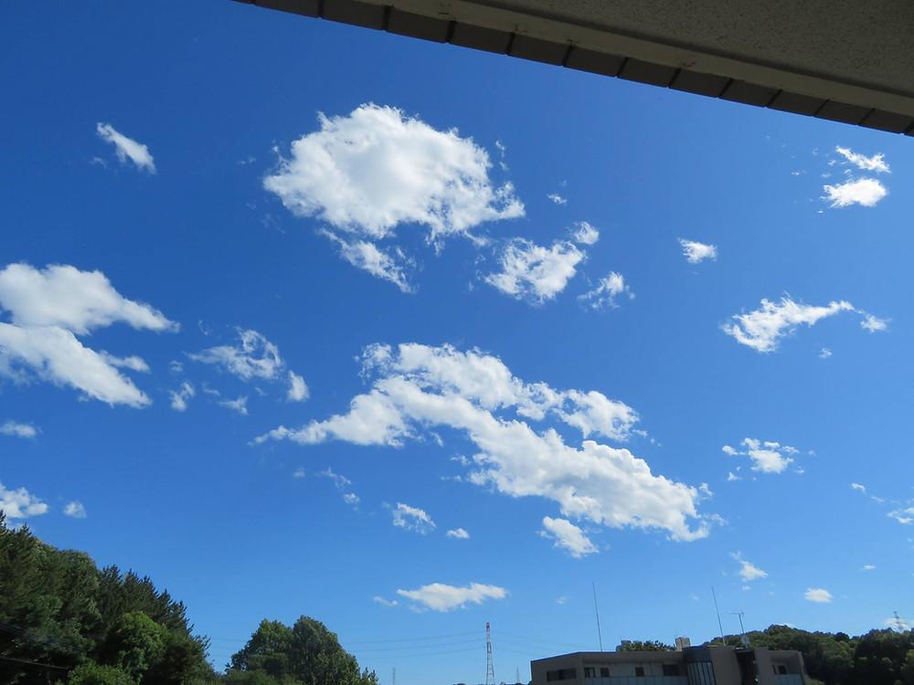 日中の青空。