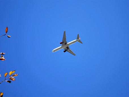 青空と飛行機です。