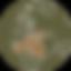 ZJ191013-68E1.png