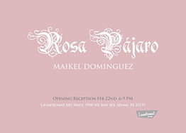 RosaPajaro.jpg