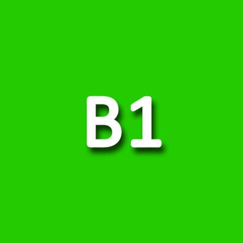 B1 - DELE EXAM