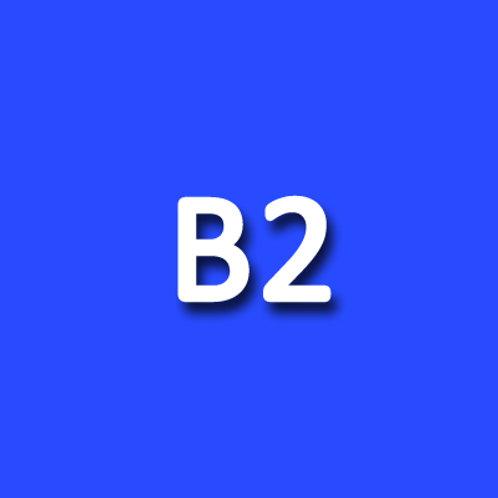 B2 - DELE EXAM