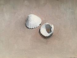 Lille-oliemaleri-studie-muslingeskaller