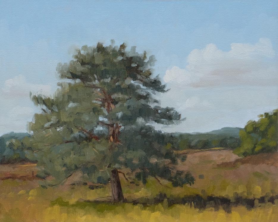 Landskabsmaleri-studie-Sejs-hede