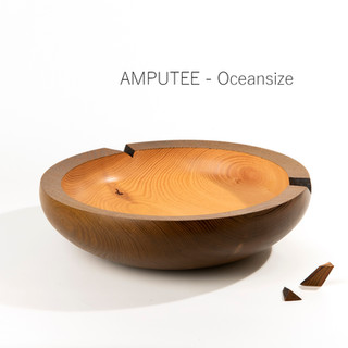 AMPUTEE by Oceansize