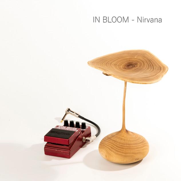 IN BLOOM by Nirvana