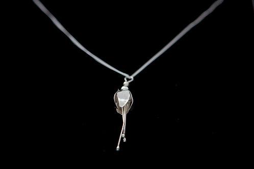 Silver Fuchsia
