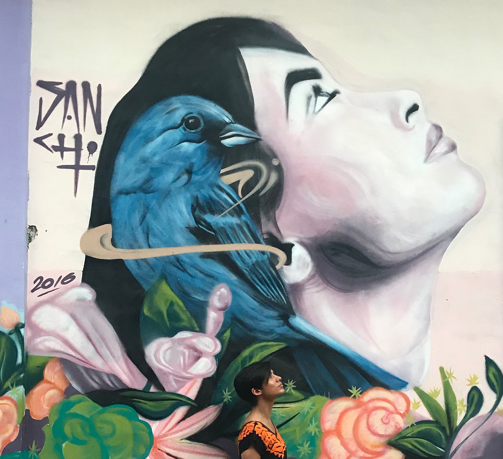 Mural of an Indigenous woman and bluebird in Colombia