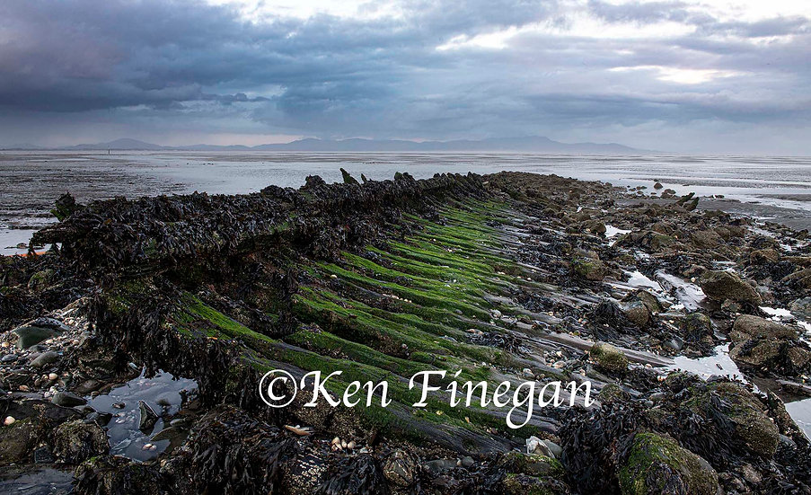 Annagassan Seascape, Co Louth