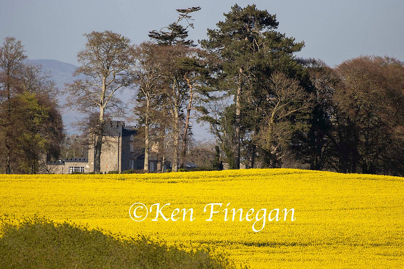 Darver Castle, County Louth