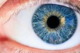 oeil bleu2.jpeg
