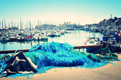 Port_of_Saint-Vaast-_la_Hougue_(France)_